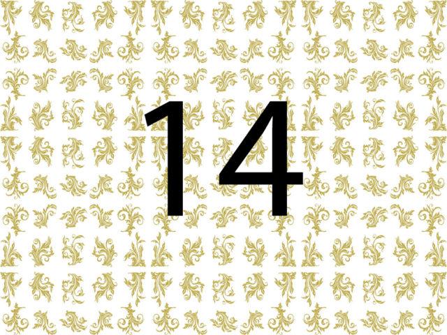 DISEÑO 14
