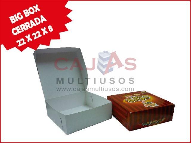 CAJA BIG BOX 22 X 22 X 8