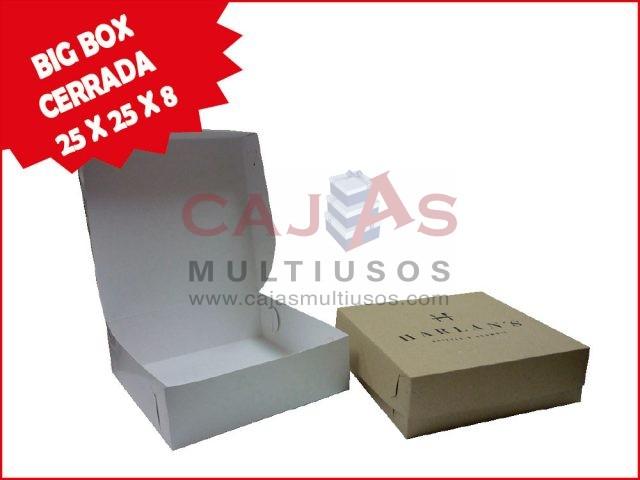 CAJA BIG BOX CERRADA 25 X 25 X 8